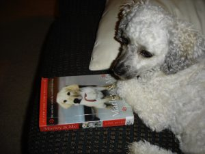 Moby with his paw on the Marley & Me book